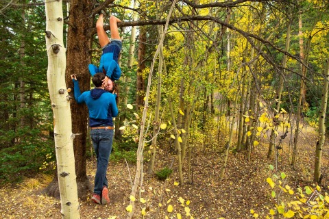 Keystone, Colorado Una coppia di arrampicatori reinventa il bacio invertito dell'Uomo Ragno arrampicandosi su un albero per i loro ritratti di fidanzamento