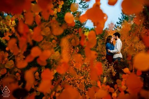 弗里斯科(Frisco),科羅拉多州秋季課程,與一對情侶在彩色樹木中的訂婚肖像