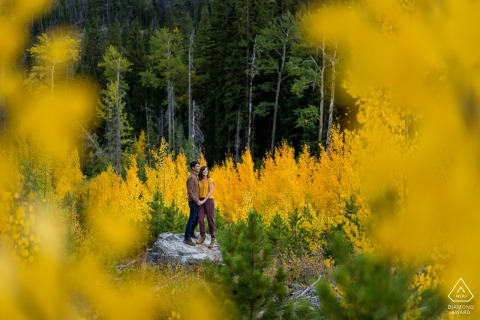 Summit County, CO Couple in an Aspen grove in fall for their pre - wedding engagement portraits