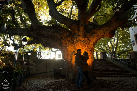 France pre wedding portrait session with engaged lovers in Strasbourg standing Against a 350 years old tree