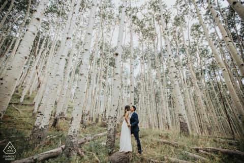 Sesión de fotos de compromiso de AZ y sesión previa a la boda en Flagstaff Park, Arizona en los árboles desnudos antes del follaje