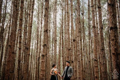 Vietnam nature pre wedding portrait session with engaged lovers standing below towering trees of Dalat