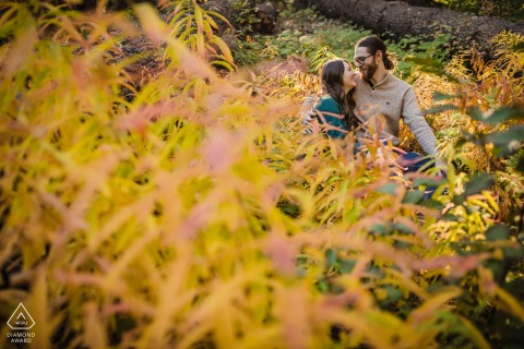 Fotografía de bodas de California en Skylandia Beach Tahoe City, CA con una pareja abrazada entre los colores del otoño