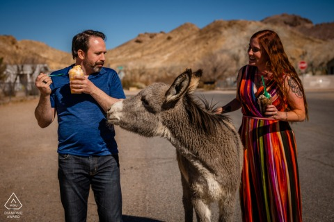 Session de portrait de couple humoristique dans le parc national de la Vallée de la mort avec un Burro sauvage essayant d'obtenir des Slus d'ananas