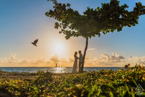 Maceió seaside couple photo shoot silhouetted with tree and bird