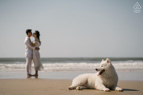 Ho Tram beach, Vietnam beach couple séance de photographie avant le jour du mariage avec un chien couché dans le sable