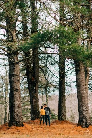 Stowe, VT pre-matrimonio retrato de una pareja besándose bajo los pinos