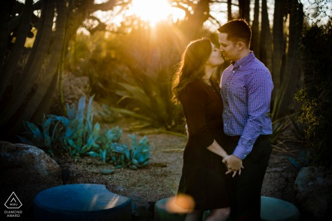 Desert Botanical Garden couple at sunset pre-wed portrait
