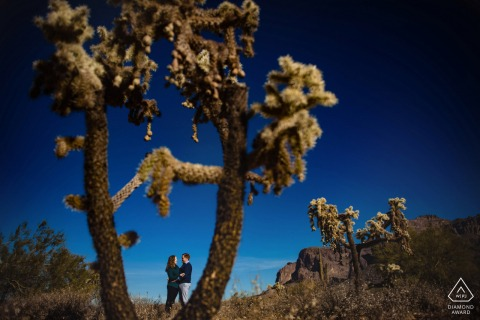 Superstition Mountains engagement pic session with a couple framed by cactus against the dark blue sky