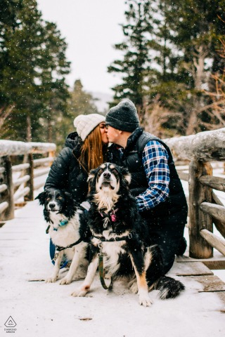 Rocky Mountain National Park engagement pic session with the Couple kissing while dogs look at camera
