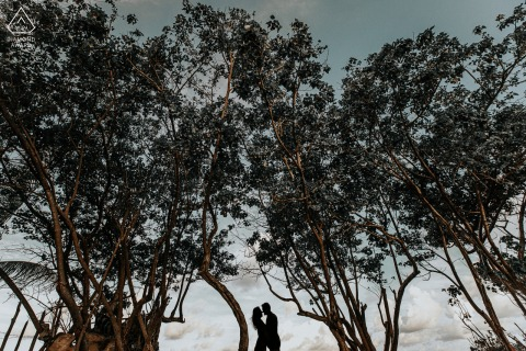 Patacho Artful Engagement Picture in Alagoas under the trees of love