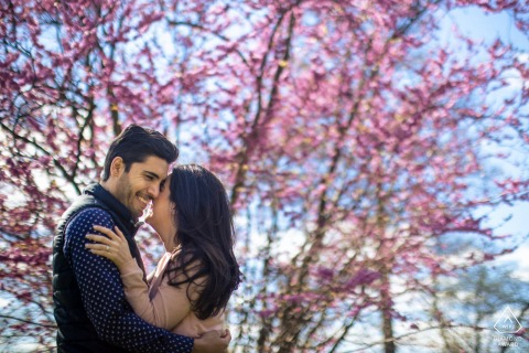 Washington DC Arboretum Fine Art Engagement Image showing The couple is laughing in front of cherry trees