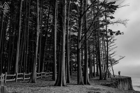 Moss Beach, California, sesión electrónica de retratos con un poco de BW Love entre bosques