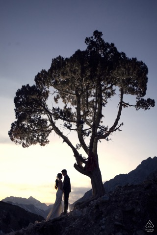 Delingha environmental engagement e-session under a huge tree with great silhouettes