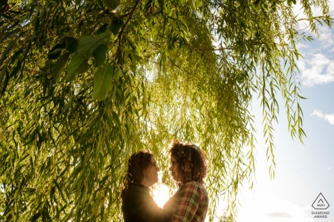 Montreal, Quebec portrait e-session for Engaged couple embracing under willow tree branches at sunset