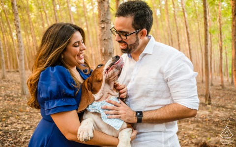 Maceió, Alagoas on-location portrait e-shoot with the man and woman on an eucalyptus farm and play with their dog