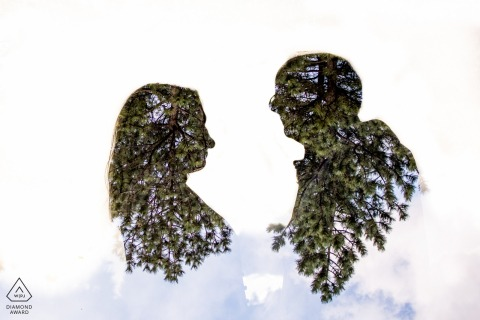 Colorado couple e-shoot in Boulder shown in silhouette for their forest engagement