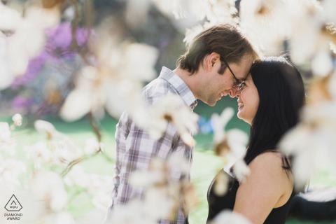 Arnold Arboretum of Harvard University couple e-session touching forehead to forehead