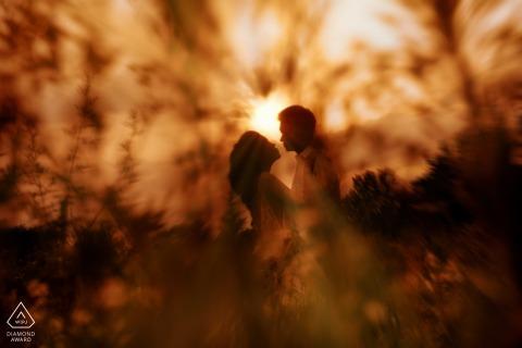 Shannxi Xi'an couple e-session behind a bush at sunset