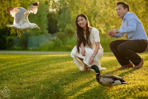 Montreal, Quebec couple e-shoot at the Angrignon Park feeding ducks and man is surprised by flying seagull