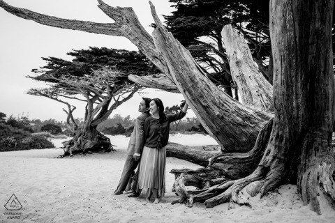 Carmel, California couple e-shoot in BW in The trees and forest on the woods