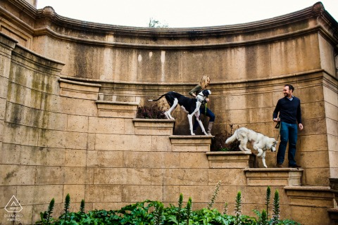 San Francisco outside environmental couple prewedding photoshootwith Striding giant steps and furry babies