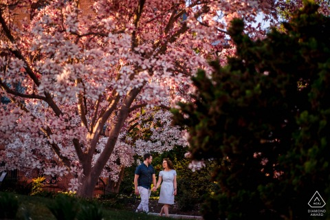 Smithsonian Castle, DC environmental pre wedding image session showing The couple strolling through the garden