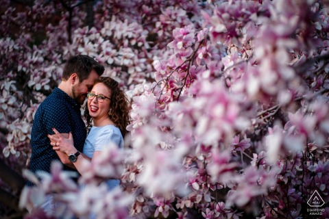 On location Smithsonian Castle, DC couple engagement portrait shootshowing an embrace within the saucer magnolias