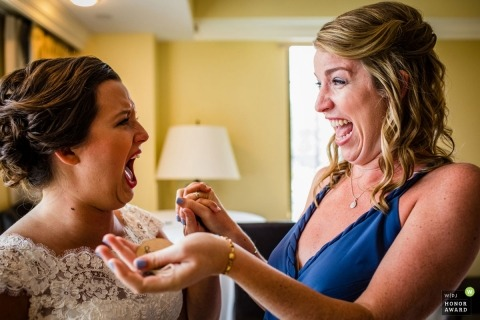 Allison Williams is an award-winning wedding photographer of the IL WPJA