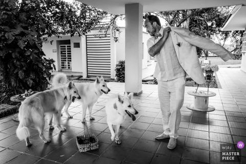 Ibague, Colombia bruidegom kleedt zich aan naast zijn honden voor de bruiloft