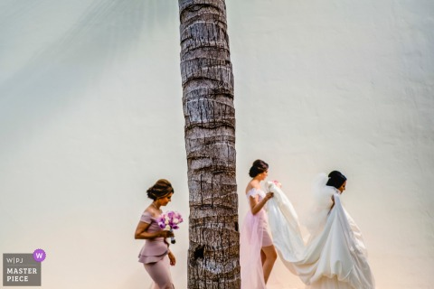 Mexico bride getting help with the dress as she walks past a palm tree