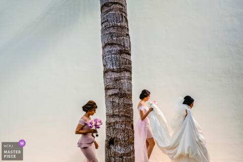 Mexique mariée obtenir de l'aide avec la robe alors qu'elle passe devant un palmier