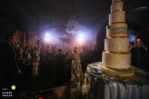 Paris Wedding Photographer - the bride and groom Address their guests before a very tall wedding cake