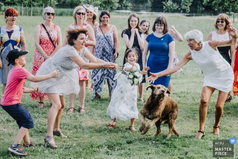 Guests and a dog reach for the bouquet outside at the wedding reception in Theix, France