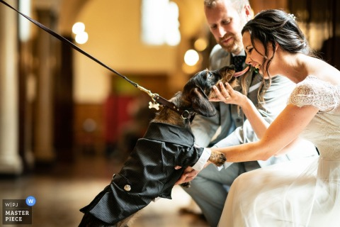 Bride and groom playing with a dog in a tux at the wedding at the Merchant Taylors Hall, London