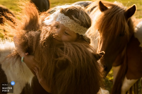 Flower girl plays with ponies outside in Nederland - Breda