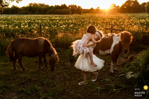 Flower girl picks up girl around some ponies in Oisterwijk - The Netherlands