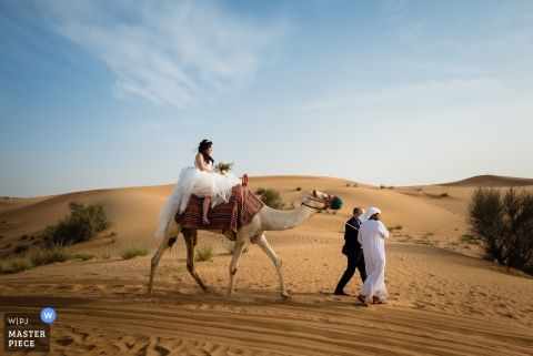 Wedding Photographer Dubai with a camel in the desert | Al Maha Desert Resort Dubai