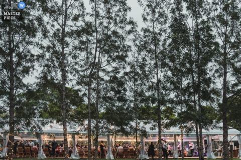 Nowa Południowa Walia, Australia Wedding Photojournalist | Ogromne drzewa przyćmiewają namiot weselny