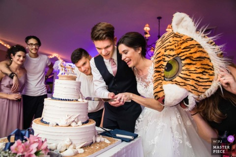 New Jersey Wedding Photojournalist | the bride and groom cut the cake as a mascot looks on