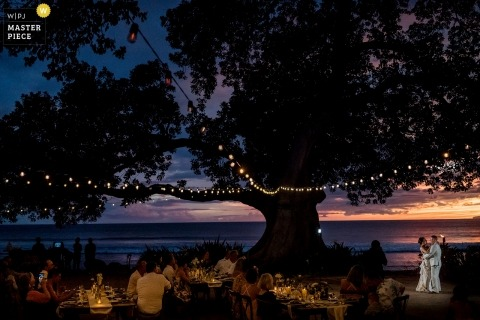 Hawaii wedding shoot with a couple at sunset dancing under a very large tree with lights in it