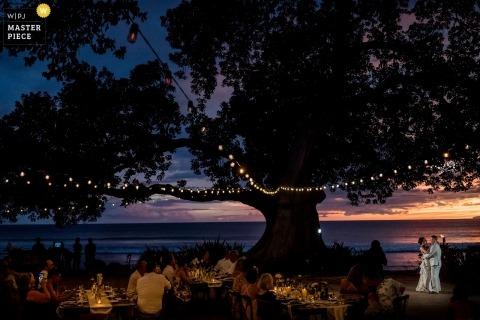 Le nozze delle Hawaii sparano con una coppia al tramonto che balla sotto un albero molto grande con le luci in esso
