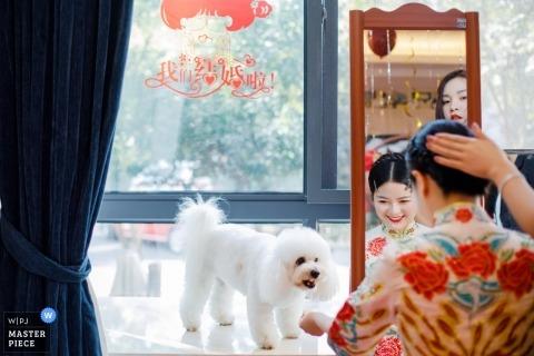 浙江省的Abi Zhu是中國浙江湖州的婚禮攝影師