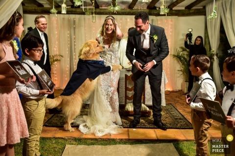 Campinas ślub strzelać z parą i psem w płaszczu podczas ceremonii