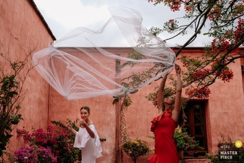 Oaxaca City, Oaxaca, Mexico photograph of the Veil. Mind of its own, going upwards and getting snagged in the tree