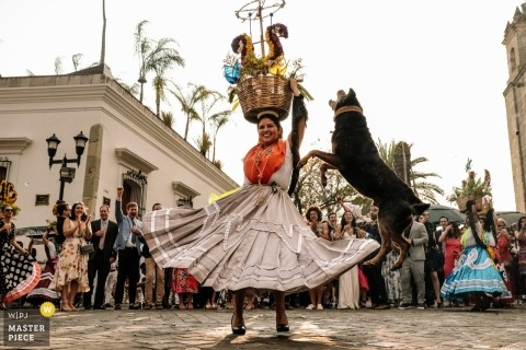 Oaxaca City, Oaxaca, Mexico - Wedding Calenda dancing in the streets with a jumping dog