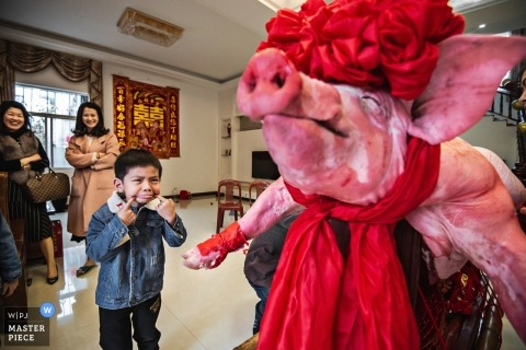 A kid with a grimace looking at a cooked pig at the wedding