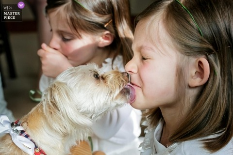 Tahoe Blue Estate wedding photographer | the Ring bearer dog licking flower girls' faces.