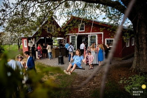 Tourterelle - New Haven, Vermont Wedding Photography | Picture of a young girl swinging in a tree amongst guests enjoying cocktail hour.