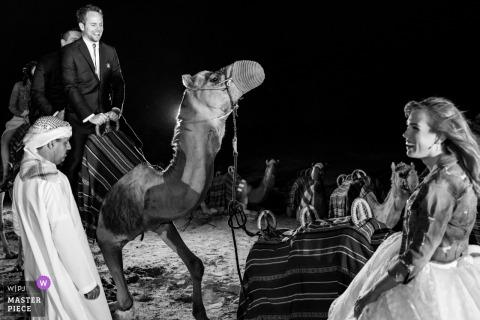 Al Maha Desert Resort Dubai Fotografie van de aankomst van de bruidegom op kameel voor de woestijn huwelijksceremonie